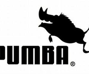 pumba, puma, and funny image