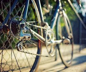 35mm, cycling, and dof image