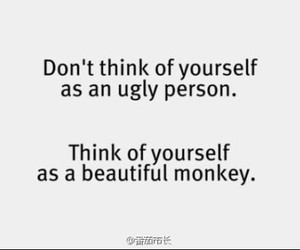 monkey, beautiful, and quote image