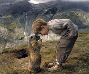 animal, boy, and nature image