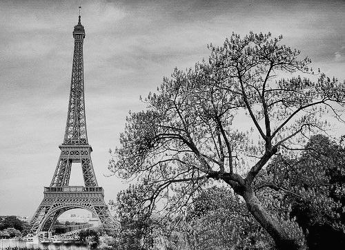 Black and white lovely paris photography inspiring picture on favim com