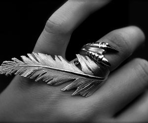 ring, feather, and black and white image