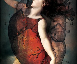heart and catrin welz-stein image