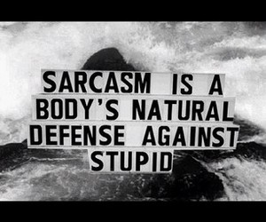 quote and sarcasm image