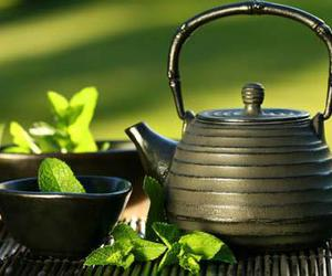 green, mint, and tea image