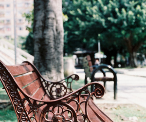 park and bench image