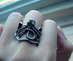 ring and octopus image
