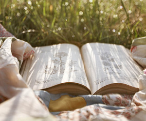 books, book, and nature image