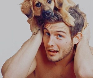 dog, boy, and cute image