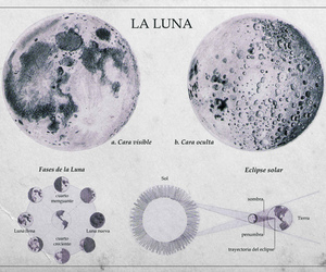 moon, luna, and la luna image