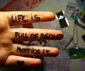 life, beauty, and notice image