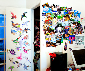 birds, colorful, and room image