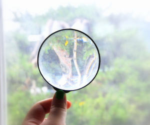 classroom, tree, and magnifying glass image