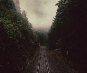 forest, train, and nature image