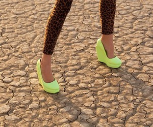 neon, shoe, and shoes image