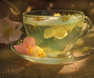 beauty, chic, and cup image