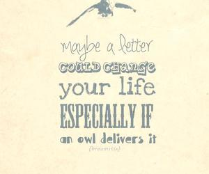 harry potter, Letter, and owl image