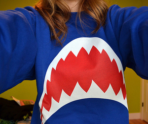 photography, shark, and sweater image