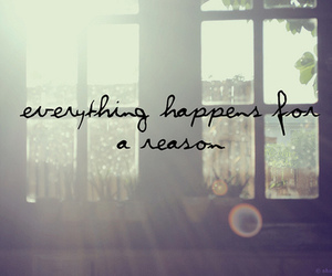 quotes, reason, and everything image