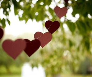 heart, hearts, and nature image