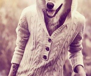 wolf, boy, and man image