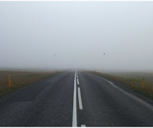 fog, road, and nature image
