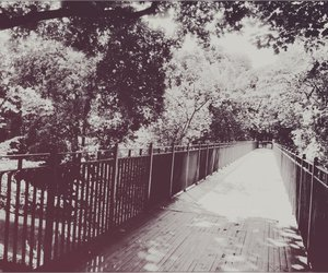 beautiful, old photo, and black and white image