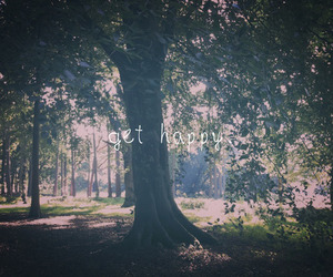 forest, typography, and happy image
