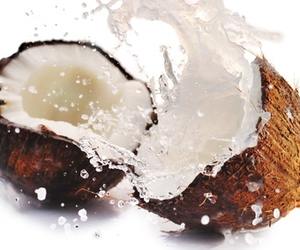 coconut, splash, and water image