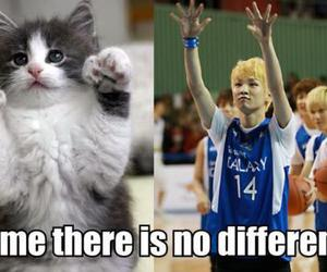 key, kitty, and cute image