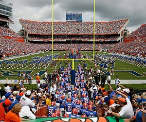 college, football, and florida image