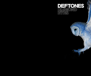 owl and deftones image