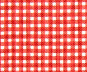 fabric and gingham fabric image