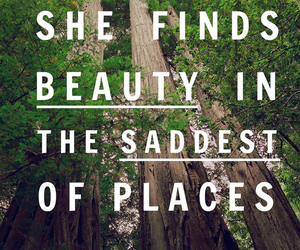 quote, beauty, and trees image
