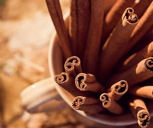 Cinnamon, fall, and autumn image