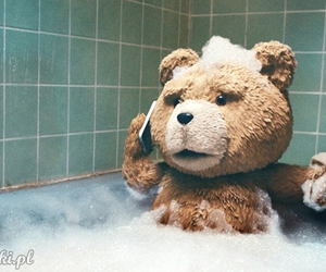 TED, bear, and movie image