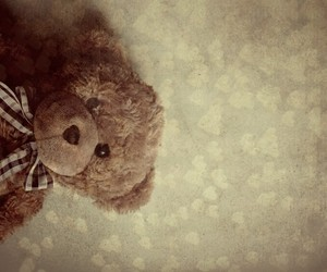 lovely, teddy, and cute image