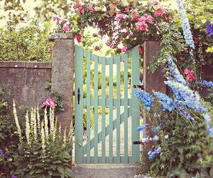 beauty, flowers, and garden door image