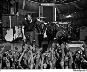 the dead weather image