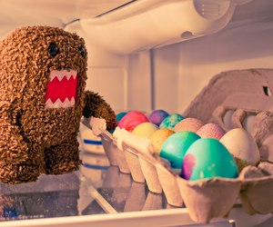 photography and domo image