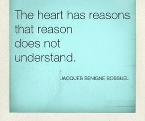 quote, heart, and reason image