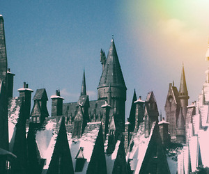 florida, hogwarts, and harry potter image