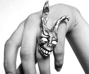 donnie darko, frank, and ring image