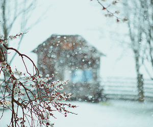 winter, photography, and snow image