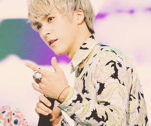 kpop, beast, and dongwoon image