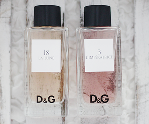 D&G, perfume, and pink image