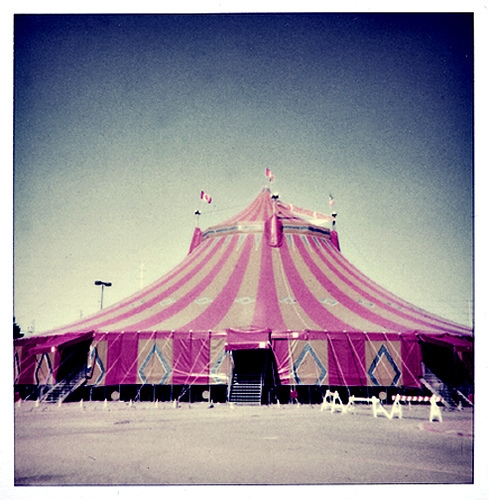 circus, vintage, and tent image
