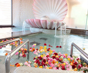 pool, flowers, and rose image