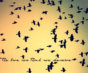 love and birds image
