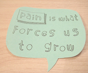 pain, quote, and life image